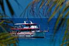Similan Queen Diving Center